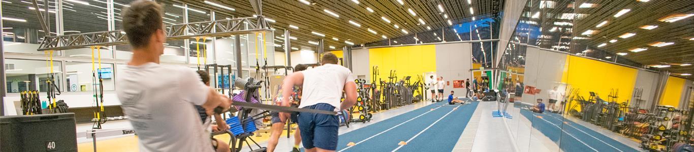 Planes de entrenamiento personalizados en Alemana Sport
