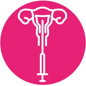 icono embriones articulo web