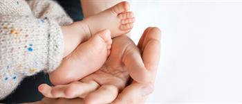 Apego exitoso: Guía de recomendaciones para padres