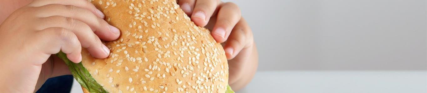 Obesidad Infantil: una enfermedad que se debe aprender a combatir