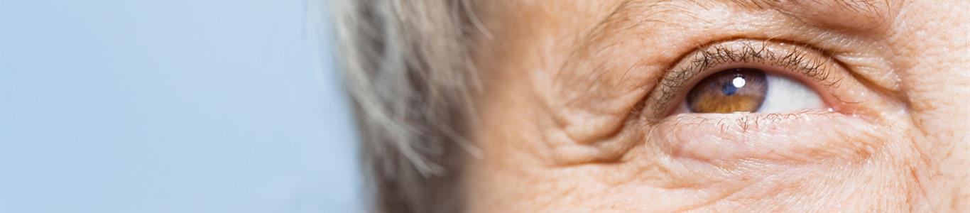 Tercera edad: a prevenir las principales enfermedades oculares